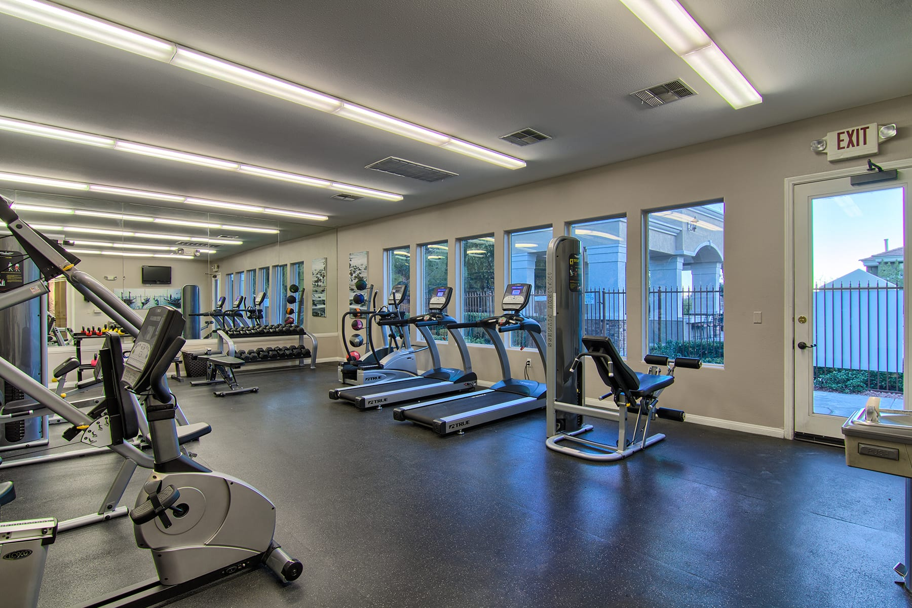 The Viviani fitness center with rows of cardio machines and weight lifting equipment.