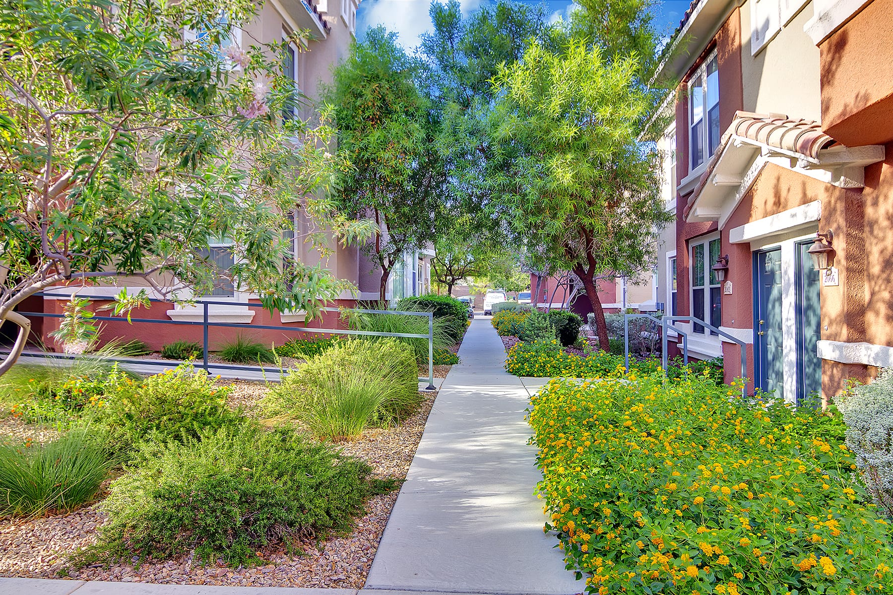Branches of paved walkways lead to the entrances of Venicia apartment homes through rocky flowerbeds and tall trees.